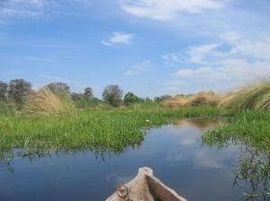 cruising-the-okavanga